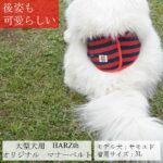 otamesi-oogata-4l